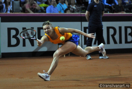 Tenis: FED CUP – Fotografii Romania vs Germania singles