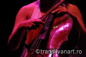 Cello player performs live on the stage