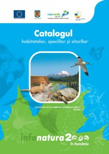 catalogMare
